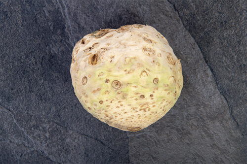 Fresh Celeriac (single) - 01