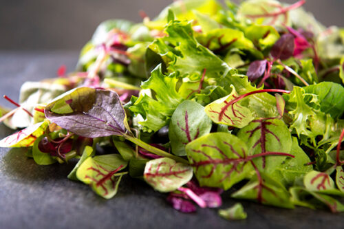 Mixed Petite Leaves (120g) - 01