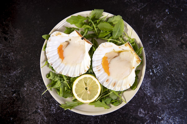 Half Shell Scallops with Roe 2 - Stevenson's - 44 Foods - 04